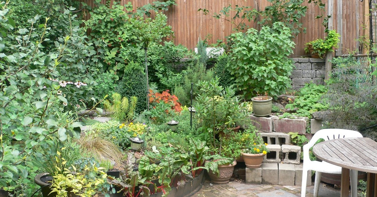 when to say no - gardening